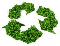 Grüne Büsche, die Recycling-Symbol bilden Abbildung 3D Lizenzfreies Stockbild