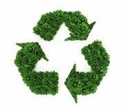 Grüne Büsche, die Recycling-Symbol bilden Abbildung 3D Stockbilder