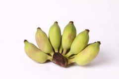 Grüne Banane lizenzfreie stockfotos