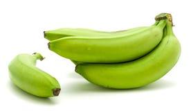 Grüne Banane der Banane lokalisiert Lizenzfreies Stockbild
