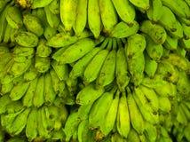 Grüne Bananen Stockbild