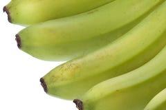 Grüne Bananen getrennt Lizenzfreie Stockbilder