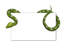 Grüne Baum-Schlange auf unbelegter Karte stock abbildung