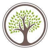 Grüne Baumlogoentwurfsschablonen-Vektorillustration ENV 10 lizenzfreie stockbilder