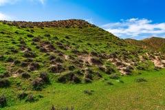 Grüne Berge Lizenzfreie Stockfotos