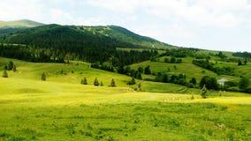 Grüne Berge in der Sommerlandschaft stockbild