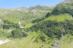 Grüne Berge Karpaten lizenzfreies stockbild