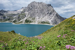 Grüne Berge und See, Österreich Stockfotos