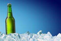 Grüne Bierflasche auf Eis Stockfotos