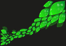 Grüne Blätter vektor abbildung