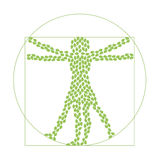 Grüne Blätter und menschliches Schattenbild stock abbildung