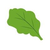 Grüne Blattikone Stockfotografie