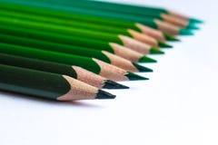 Grüne Bleistifte in der Reihe, lokalisiert auf weißem Hintergrund Lizenzfreie Stockfotos