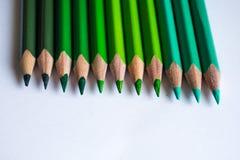 Grüne Bleistifte in der Reihe, lokalisiert auf weißem Hintergrund Stockfotos