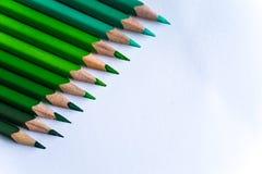 Grüne Bleistifte in der Reihe, lokalisiert auf weißem Hintergrund Stockbilder