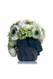 Grüne Blumen in einem grünen Topf auf lokalisiertem Hintergrund mit reflektieren sich Lizenzfreie Stockbilder