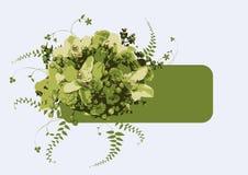 Grüne Blumenfahne Stockfoto
