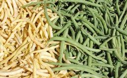 Grüne Bohne Lizenzfreies Stockfoto