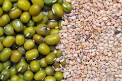 Grüne Bohne und weißer Sesamstartwert für zufallsgeneratorhintergrund. Stockfotografie