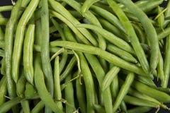 Grüne Bohnen Lizenzfreies Stockbild