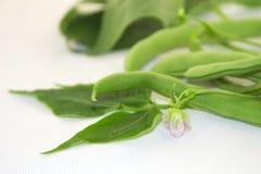 Grüne Bohnen auf einem weißen Hintergrund Lizenzfreie Stockbilder