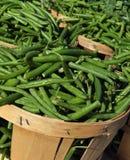 Grüne Bohnen in den Scheffeln Stockfoto