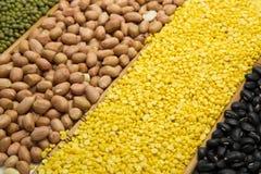 Grüne Bohnen, die Barke abziehen, grüne Bohnen, schwarze Bohnen und Erdnüsse lizenzfreie stockbilder