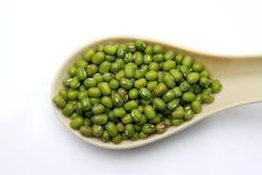 Grüne Bohnen in einem Löffel Stockfoto