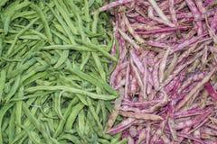 Grüne Bohnen und grüne Bohnen Stockbilder