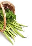 Grüne Bohnen und Salat Lizenzfreie Stockbilder
