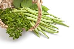 Grüne Bohnen und Salat Stockfotos