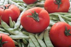 Grüne Bohnen und Tomaten stockbild