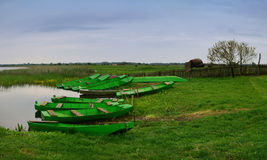 Grüne Boote am Nationalpark Zasavica Stockfotografie