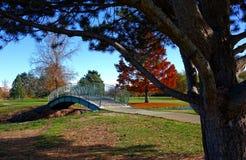 Grüne Brücke in Autumn Park Lizenzfreie Stockfotografie