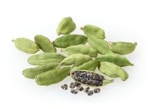 Grüne Cardamonhülsen lokalisiert auf Weiß Lizenzfreies Stockfoto