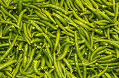 Grüne chillis Stockfotos