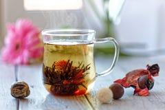Grüne chinesische Teeblumenknospe, die in der Glasteeschale blüht Flache Schärfentiefe des Morgenfrühstücks Stockbild