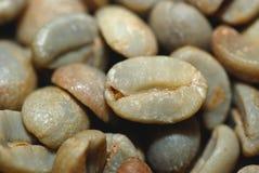 Grüne coffe Bohne Lizenzfreies Stockbild