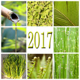 2017, grüne Collage Lizenzfreie Stockfotografie