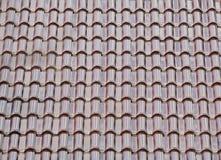 Grüne Dachplatte Stockbilder