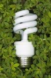 Grüne energiesparende Glühlampe Stockbilder