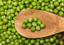 Grüne Erbse stockfoto