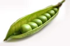 Grüne Erbse in einer Hülse. Lizenzfreies Stockbild