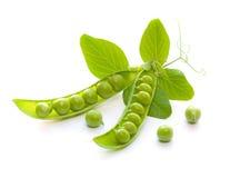 Grüne Erbsen Lizenzfreie Stockbilder