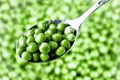 Grüne Erbsen auf dem Löffel Stockbild