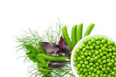 Grüne Erbsen auf der Platte und den Hülsen von Erbsen, Dill, Petersilie, Basilikum, lizenzfreie stockfotos