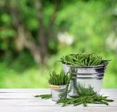 Grüne Erbsen in den Eimern Das Konzept einer gesunden Diät Compositio stockbilder