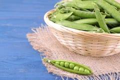 grüne Erbsen in einer Hülse in einem großen Weidenkorb auf einem blauen hölzernen Hintergrund Lizenzfreie Stockfotografie