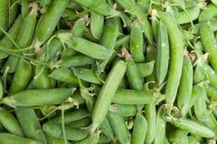 Grüne Erbsen Gemüse mit Startwert für Zufallsgenerator Stockbilder
