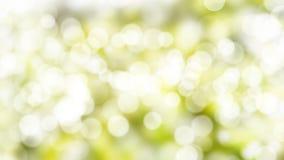Grüne Farbe der abstrakten Beschaffenheitsnaturunschärfe und bokeh Naturhintergrund lizenzfreies stockbild